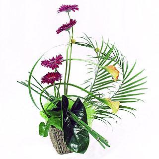 best-modern-flower-arrangements-for-funeral