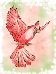 cardinalfly